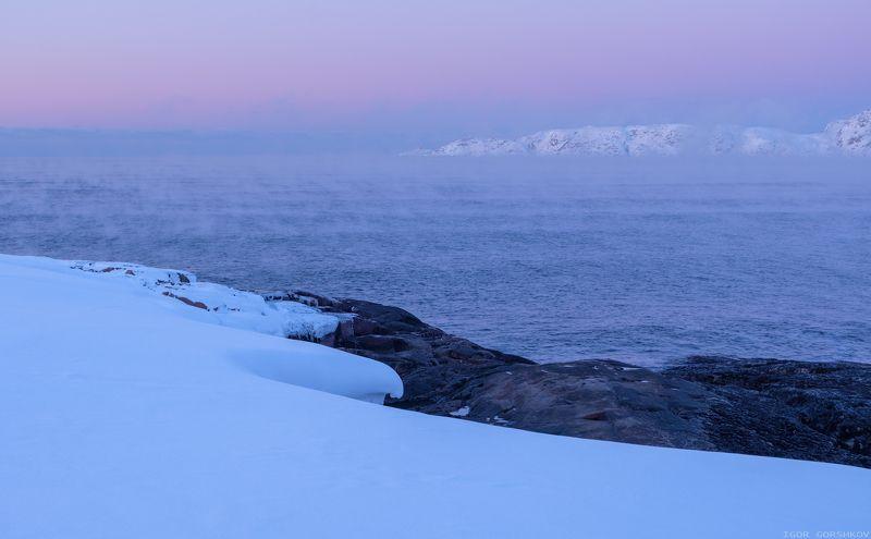 баренцево море,териберка,вечер,сумерки,волны,зима,крайний север,заполярный круг,пейзаж,россия,берег,закат,туман,пар,мороз,холод Угасающие краски заполярного вечераphoto preview