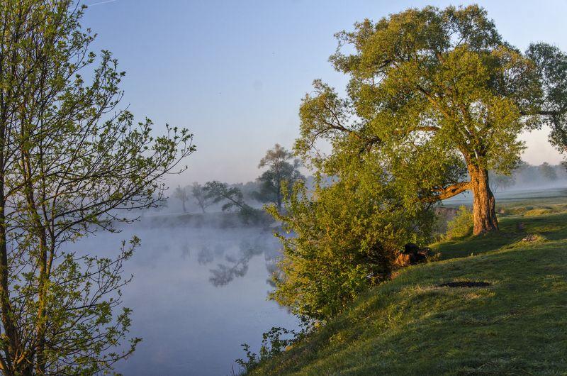 nevant60, пейзаж, красота, андреевский луг, утро Утроphoto preview