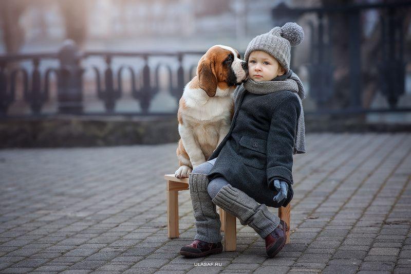 портрет, зима, winter, девочка, girl, животные, собака, сенбернар, щенок, dog, друзья, солнышко, лучи, happy, happiness, сказка, волшебство ***photo preview