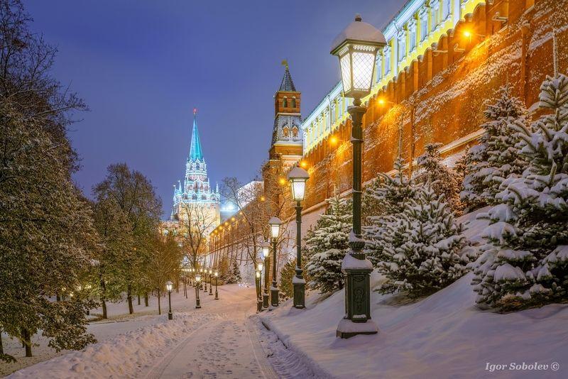 москва, кремль, зима, вечер, moscow, kremlin, winter, evening У Кремлевской стеныphoto preview