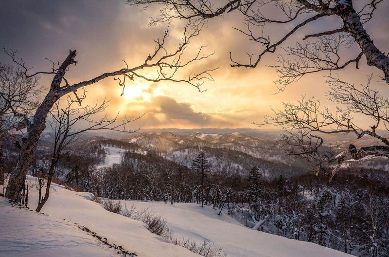В горахphoto preview