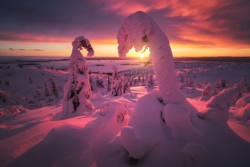 россия, кольский полуостров, мурманская область, кандалакша, природа, пейзаж, зима, горы, сопка, снег, закат, лесотундра, белое море Русский Северphoto preview