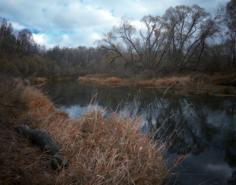 лес, природа, пейзаж, осень, река, вода, ручей, подмосковье Предзимьеphoto preview