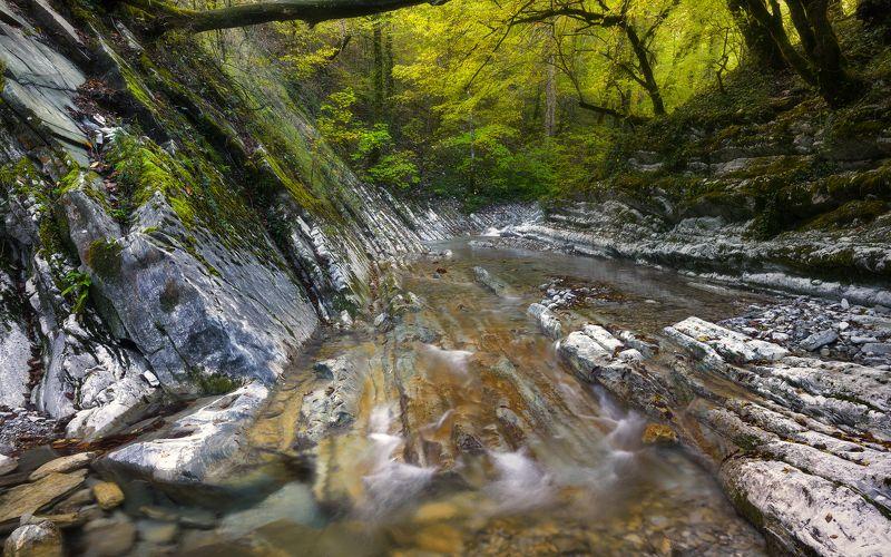 Осень на речке Каменистойphoto preview