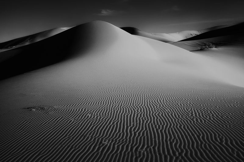 марокко, путешествие, пустыня, репортаж, африка, сахара Монохромная Сахараphoto preview