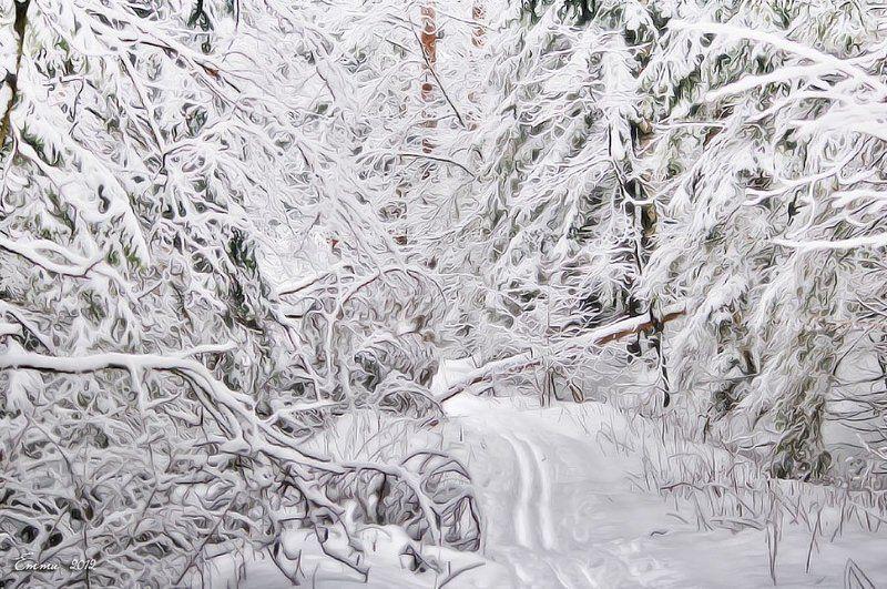 зима, природа, снег, зарисовка Белым-бело..photo preview