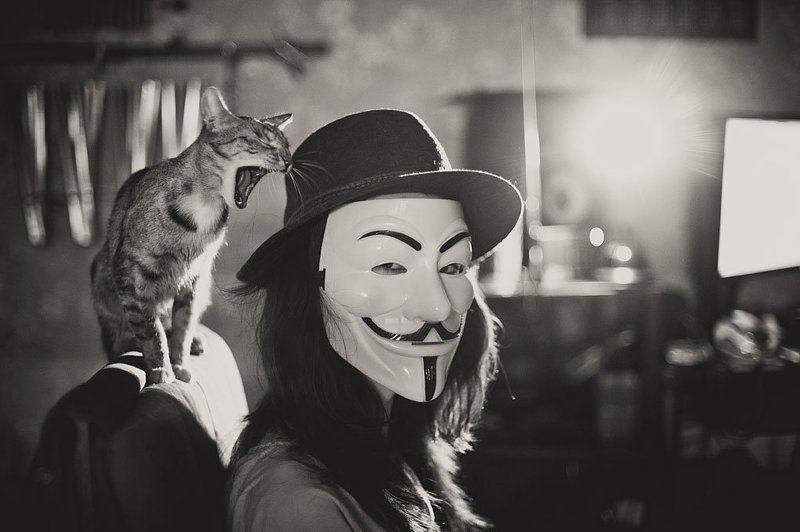 vendetta, anonymus, mask ***photo preview