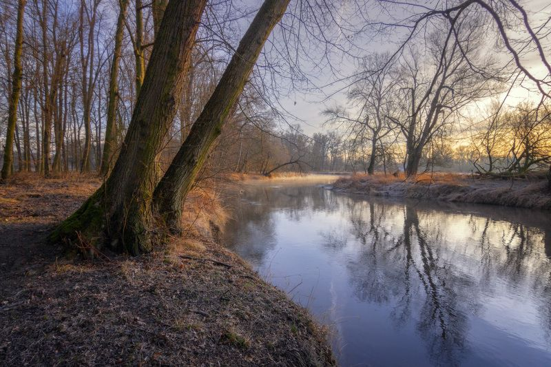 река, утро, природа, river, morning, nature Утро на рекеphoto preview