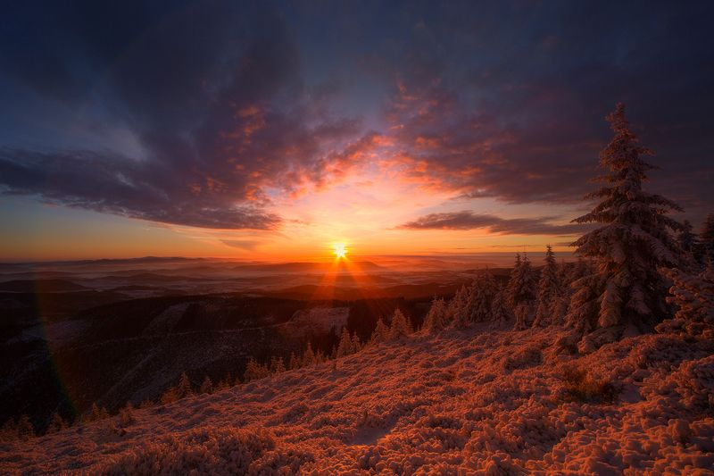 landscape,canon,sunrise,winter When the Morning Comes to Meet You.photo preview
