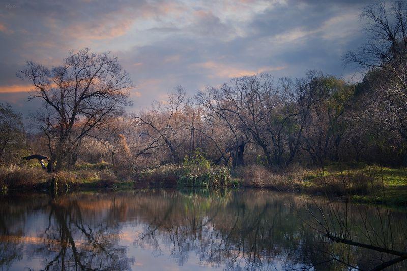 весна,утро,берег,озеро Берег надежды ...photo preview