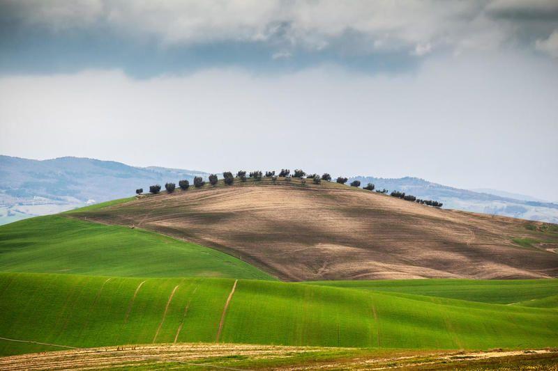 италия гребешокphoto preview