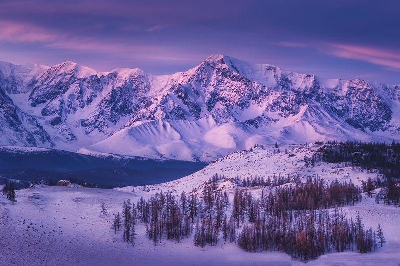 После морозной ночи. В горах Алтаяphoto preview
