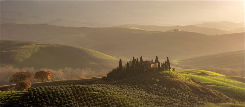 italy,san quirico d\\\'orcia,italia,свет,пейзаж,италия,тоскана,дерево,toscana,зима,tuscany,бельведере,пейзажи тосканы Утренний свет Бельведере фото превью