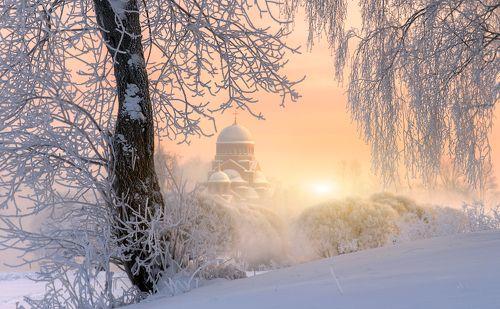морозное утро в Муринском парке...
