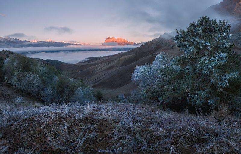 кавказ, ингушетия Ингушетия. Осенним утром в заповеднике.photo preview