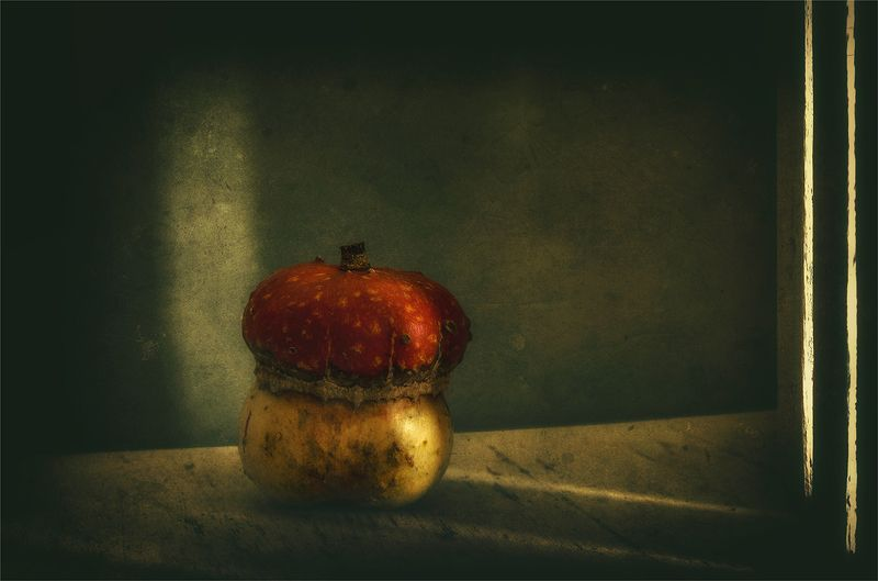 still life, натюрморт,    винтаж,  ретро, еда, тыква, минимализм, свет, тень, натюрморт с тыковкойphoto preview