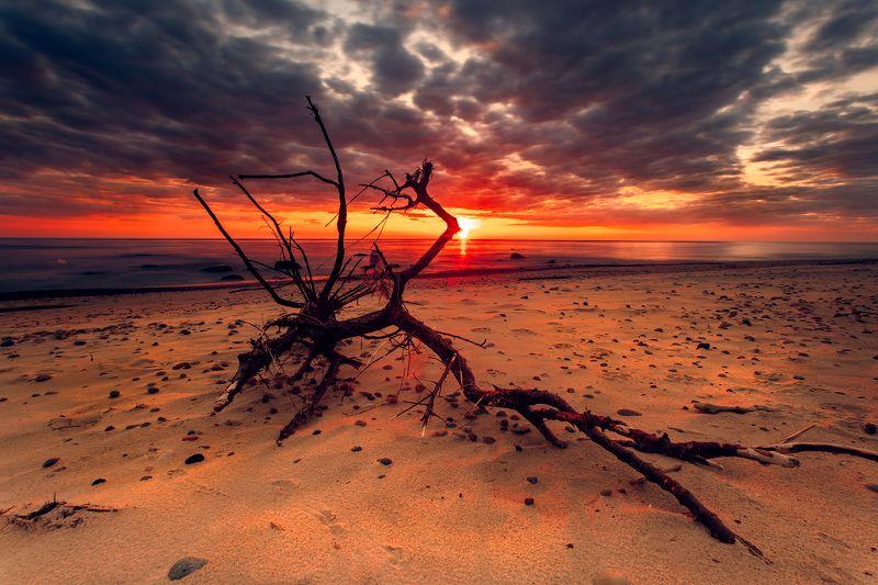 landscape, seascape, baltic sea, sunset Baltic Monstersphoto preview