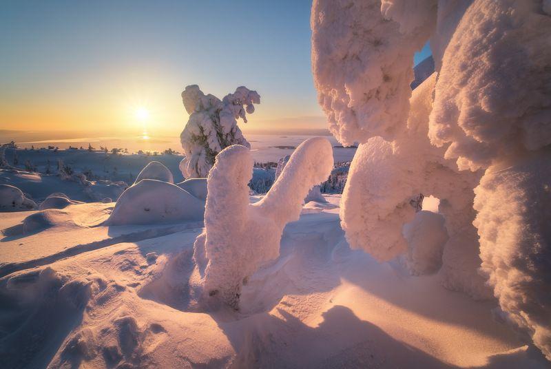 россия, кольский полуостров, мурманская область, кандалакша, природа, пейзаж, зима, горы, сопка, снег, рассвет, лесотундра, белое море, заполярье Снежные скульптуры Заполярьяphoto preview