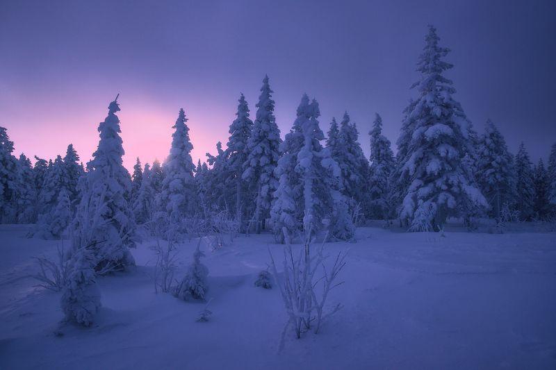 урал, таганай, зима В зимних шубахphoto preview