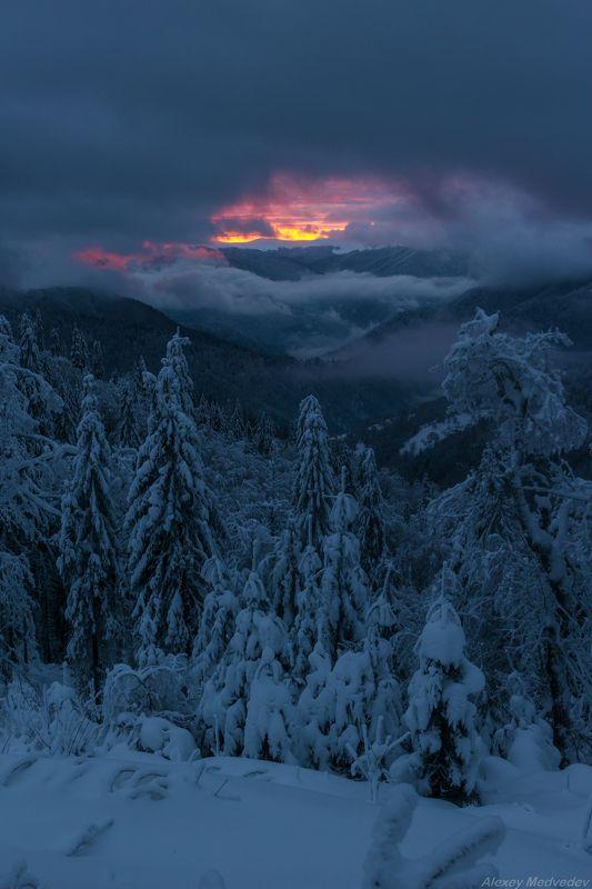 горы, гори, Закарпаття, зима, Карпати, Свидовець, лопухів, лопухов, свидовец, карпаты, закарпатье, ночь В ожиданииphoto preview