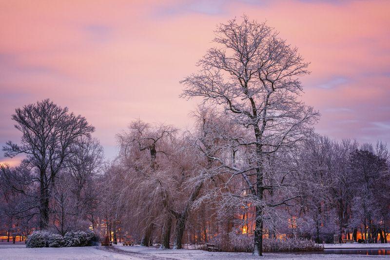 один зимний вечерphoto preview