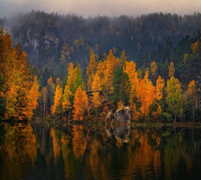 осень природа путешествия пейзаж вода озеро водоём туман деревья отражения чехия скалы утро листва Осень в Адршпашских скалахphoto preview
