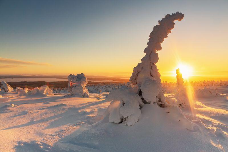 пейзаж, природа, закат Зимняя сказкаphoto preview