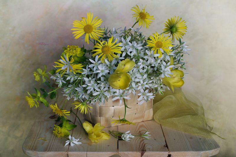 весна,цветы, вера павлухина,натюрморт, Весна в лукошкеphoto preview