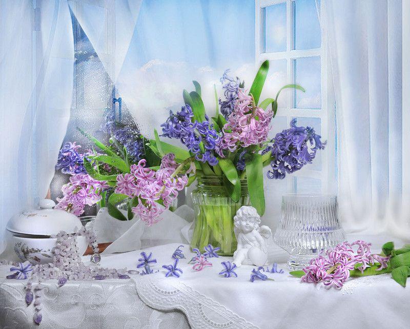 still life,натюрморт,фото натюрморт, цветы, гиацинты, весна, март, первый день весны, Вестник ароматов вешних...photo preview