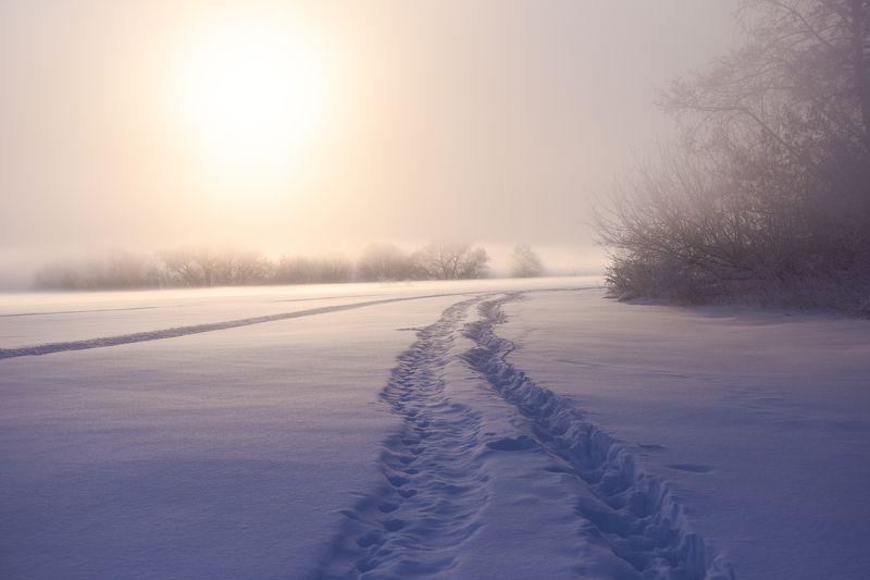 рассвет, мороз, туман, река Дороги, которые мы выбираемphoto preview