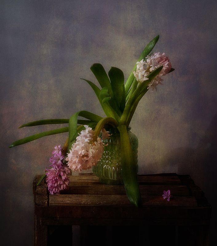 натюрморт,весна,цветы,гиацинты с гиацинтами...photo preview