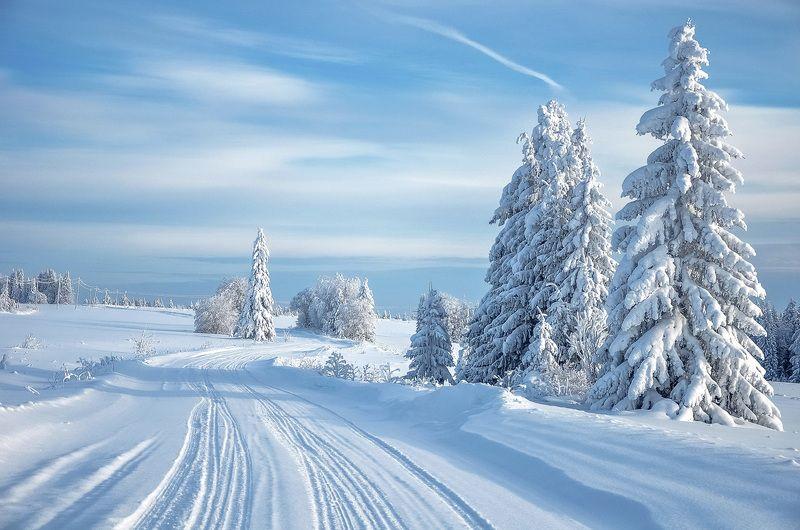 удмуртия, зима, иней,кезский район No titlephoto preview