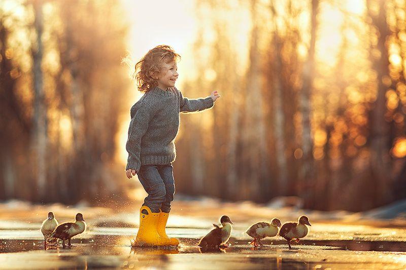мальчик, утята, гусята, весна Дружно шагом...photo preview