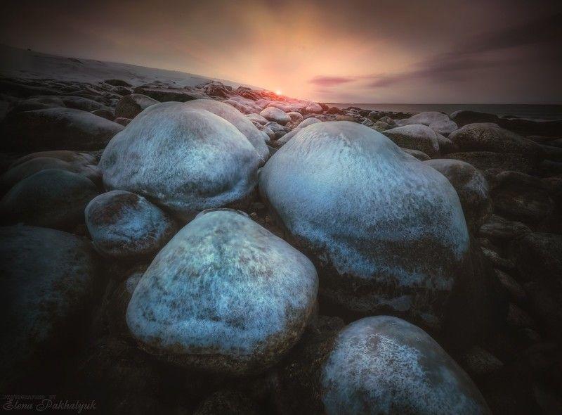 териберка,россия,кольский,пейзаж,фототур,закат,зима,солнце,облака,розовый,природа,море,океан,побережье Топазы Ледовитого.photo preview