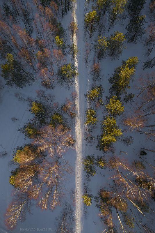 Тропа лесных жителей photo preview