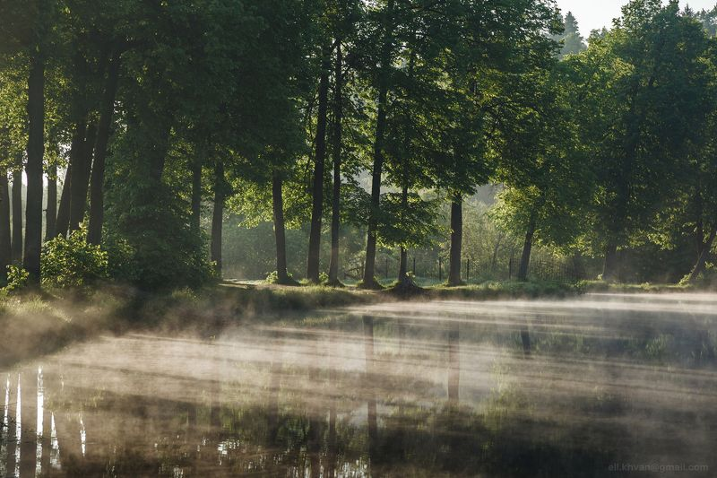 Утро в Середниковоphoto preview