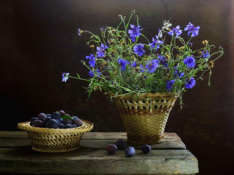 натюрморт,лето,букет,настроение,композиция,корзина,цветы,слива С васильками и сливойphoto preview
