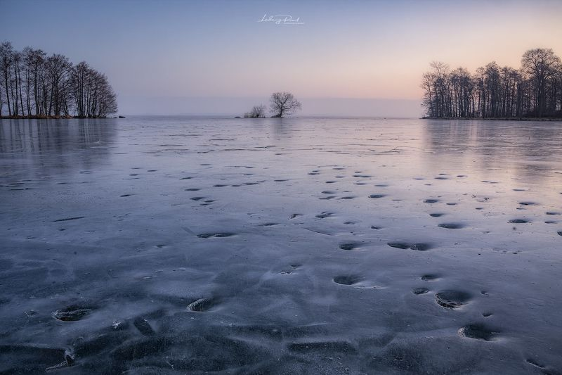 blue, cold, horizon, ice, lake, lake hjälmaren, ludwig riml  photography, morning, morning light, nature, outdoors, reflection, sunrise, tracks, tree, trees, winter Walking on Waterphoto preview