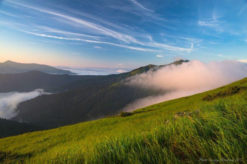 пейзаж, карпаты, лето, красиво, мармароссы, утро, туман, небо Туман плывёт по горамphoto preview