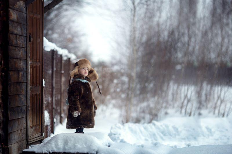 зима морозное утроphoto preview