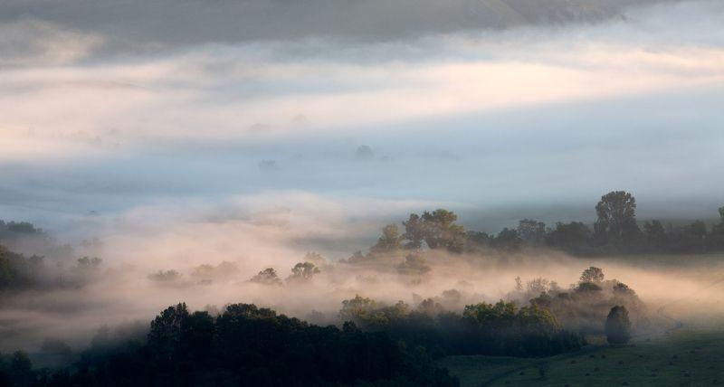 пейзаж, туман, утро, деревья, долина, башкирия, урал, олег_грачёв,oleg_grachev, canon, canonlens, fog,morning,ural, Акварельное утро.photo preview