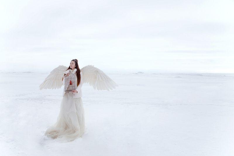белое снег белыйангел ангел сердце клетка Белый мирphoto preview
