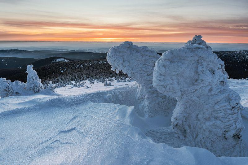 Ice sculpturesphoto preview
