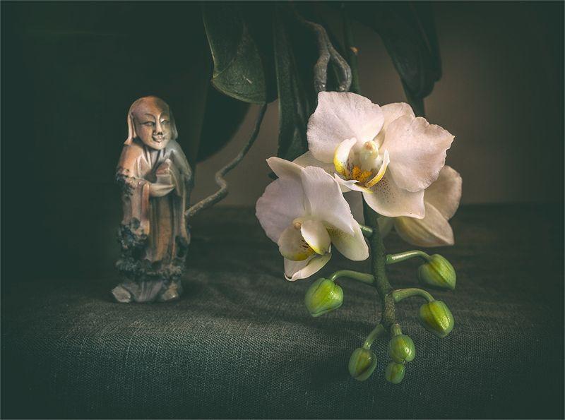 still life, натюрморт,    винтаж,  ретро, цветы, орхидея, фигурка, оникс, минимализм натюрморт с орхидеей и фигуркойphoto preview