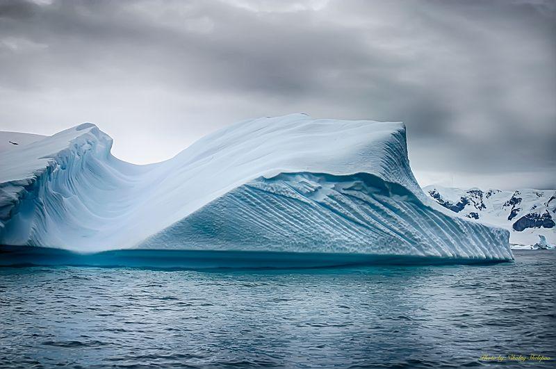 Антарктида 40photo preview
