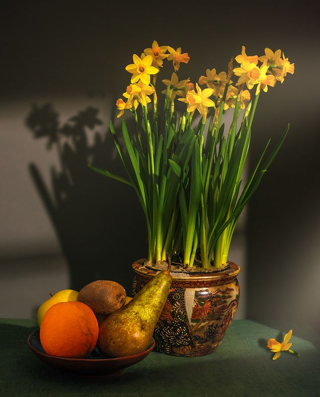 still life, натюрморт,    винтаж,   еда,  фрукты, спелый, вкусный, цветы, нарцисс, свет,  тень, натюрморт с нарциссами и фруктамиphoto preview
