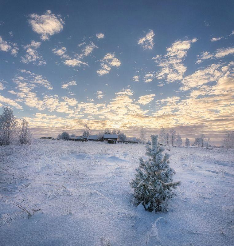 Зефирная зимаphoto preview