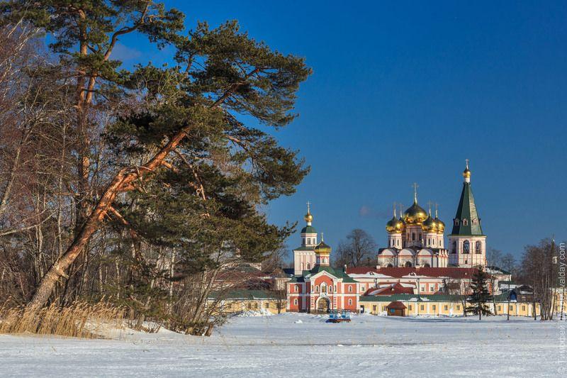 иверский монастырь, валдай Склонилась сосна как печаль Над гладью озёрной во льду Обитель стоитphoto preview