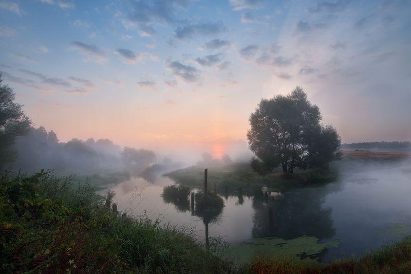 утро, рассвет, река, небо, облака, солнце, туман туманное утроphoto preview