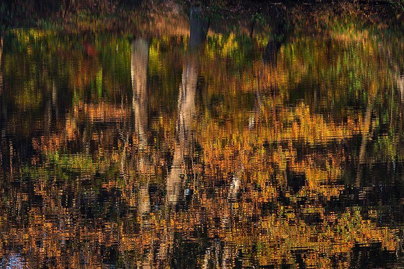 Осенний калейдоскопphoto preview